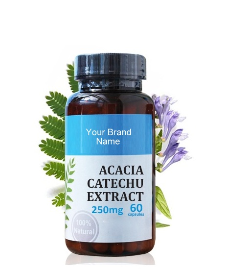 Acacia Catechu Extract Food Supplement Natural Private Label | Wholesale