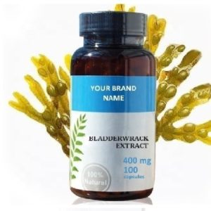 Dietary Food Supplement From Bladderwrack Extract For Weight Loss Natural Private Label | Wholesale