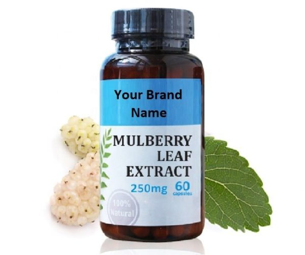 Mulberry Leaf Extract Food Supplement Natural Private Label | Wholesale