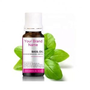 Pure Basil Essential Oil 100% Natural Product Private Label | Wholesale