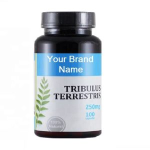 Tribulus Terrestris Capsules For Men Natural Private Label | Wholesale | Bulk