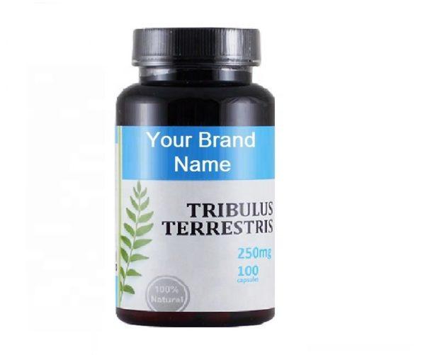 Tribulus Terrestris Capsules For Men Natural Private Label | Wholesale | Bulk