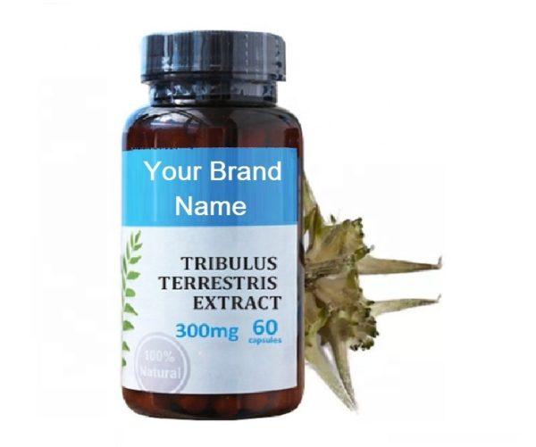 Tribulus Terrestris Extract Capsules For Men Natural Private Label | Wholesale | Bulk