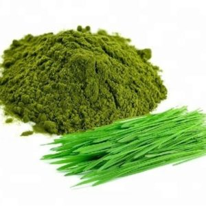 Wheatgrass Powder Vegan And Gluten Free Certified Organic | Private Label | Bulk | Made In EU